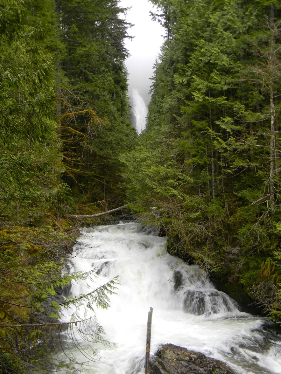 magical walk to the falls4